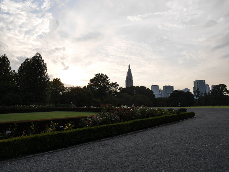 Citypuisto