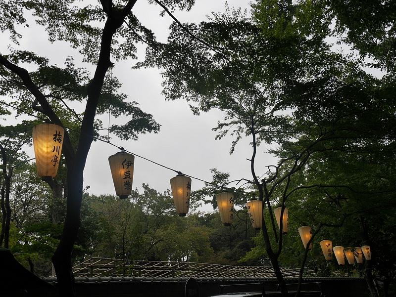 Valolyhtyjä puiston täydeltä