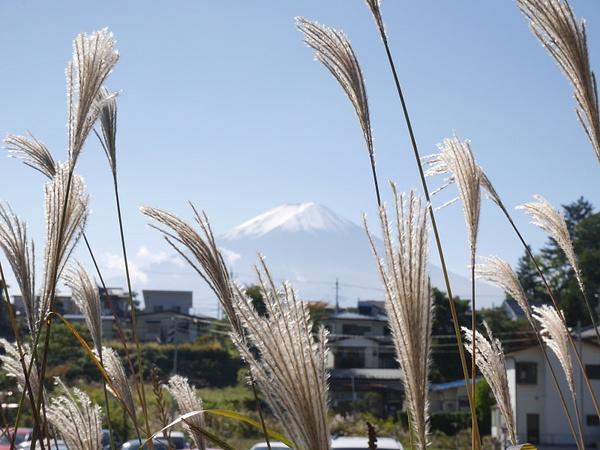 Hienot heinät... ja Fuji. by hannajamikko