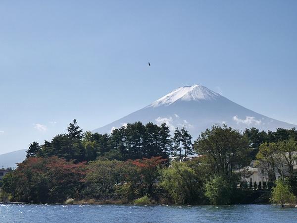 Bongatkaa hyvän onnen haukka. Osa Japanin mytologiaa. by hannajamikko