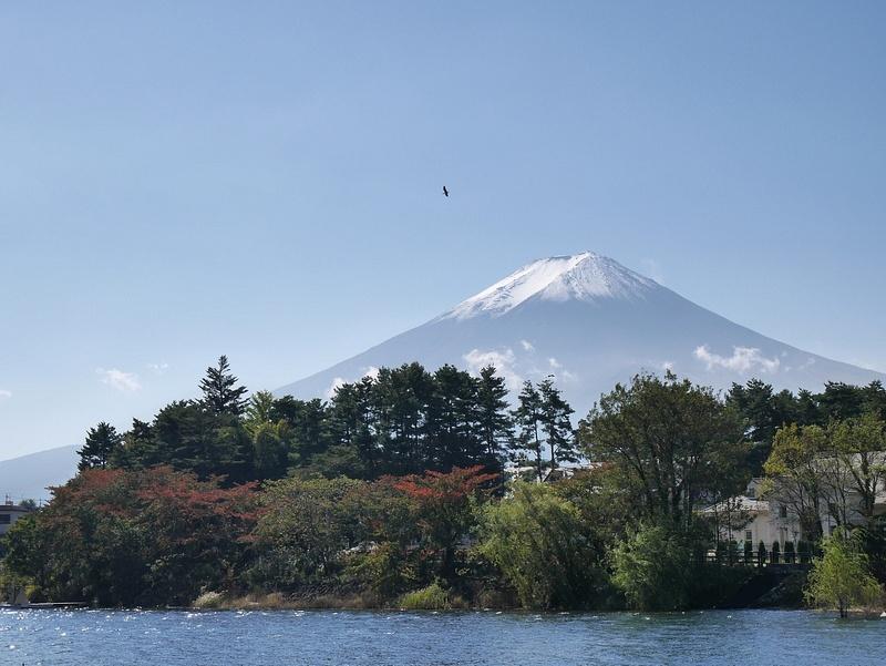 Bongatkaa hyvän onnen haukka. Osa Japanin mytologiaa.