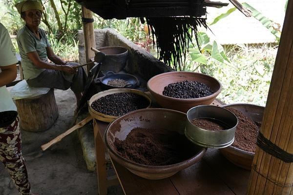 Tässä paahdetaan kuuluisaa Civet -kahvia. Hannakin pääsi kokeilemaan paahtamista ja jauhantaa. by hannajamikko