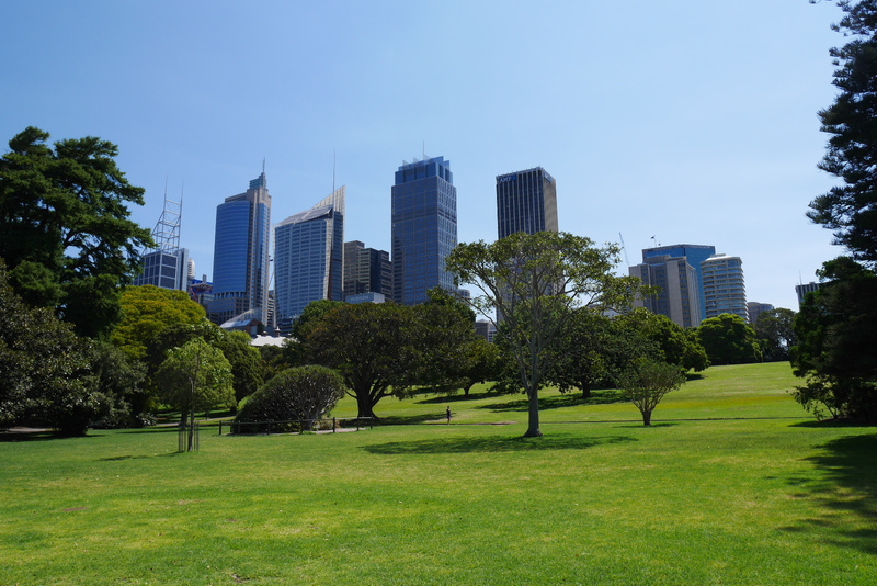 Sydneyn perus maisemaa!