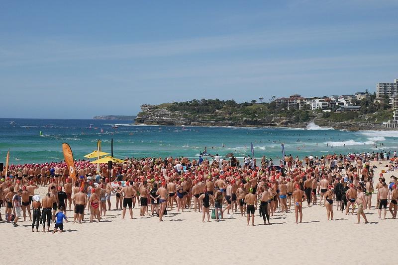 Sydneyn viimeinen kuva. Uimakilpailu Bondi Beachilta Bronte Beachille.