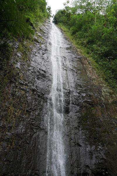 Retki Manoa Falls vesiputoukselle by hannajamikko