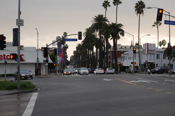 West Hollywoodin palmuja by hannajamikko