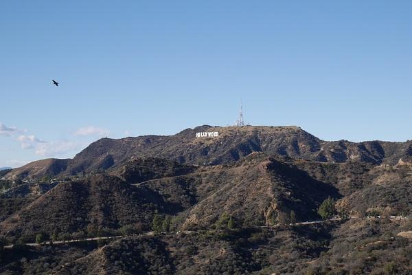 Hollywood -kyltti by hannajamikko