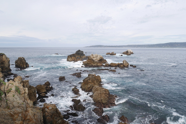 Point Lobos State Natural Reserve by hannajamikko