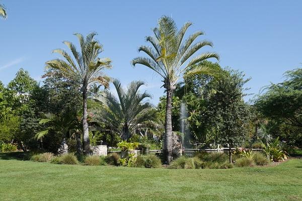 Miami Botanic Garden by hannajamikko