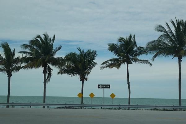 Florida by hannajamikko