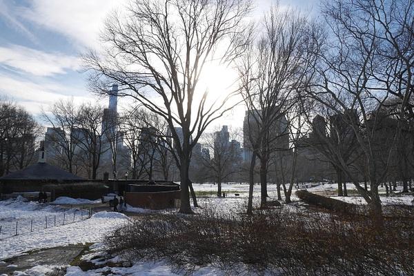 Idyllinen Central Park by hannajamikko