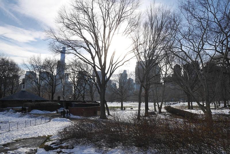 Idyllinen Central Park