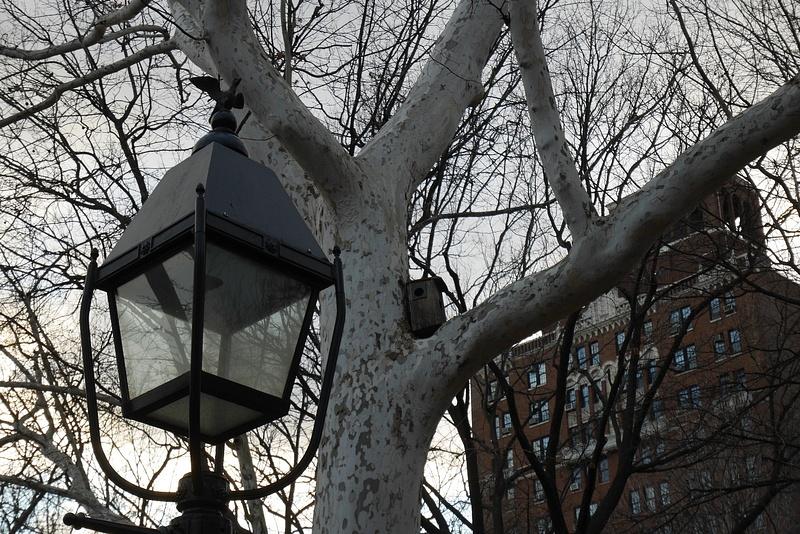 Washington Squaren puistotunnelmaa