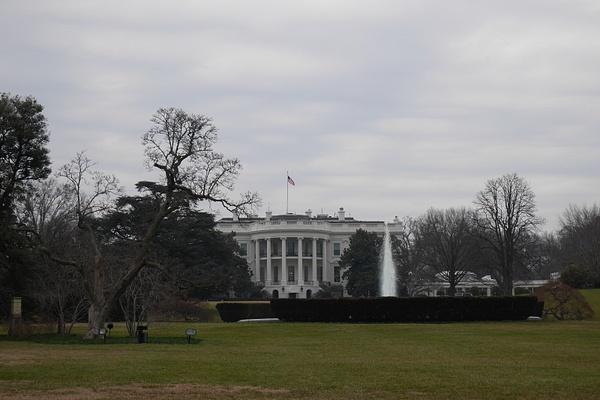 The White House by hannajamikko
