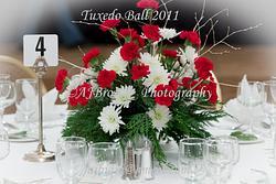 Tuxedo Ball 2011