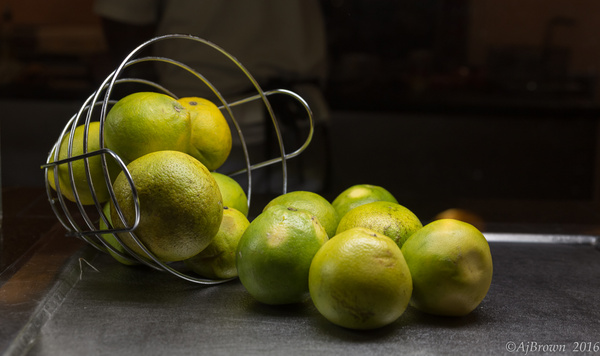 IMG_1457 by AJBrown
