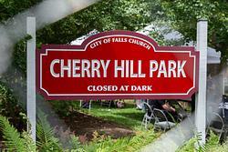 Tinner Hill 2019