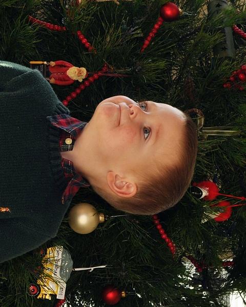 Merry by markhdurango