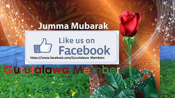 IMG_6969 by MohamedAslam82603
