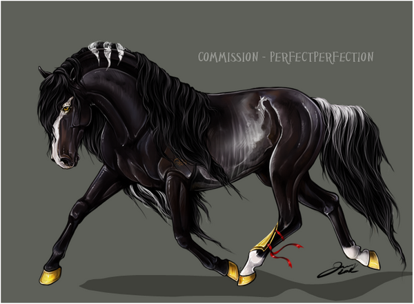 commish___perfectperfection_by_darwem0-d5f1925 by alimarije