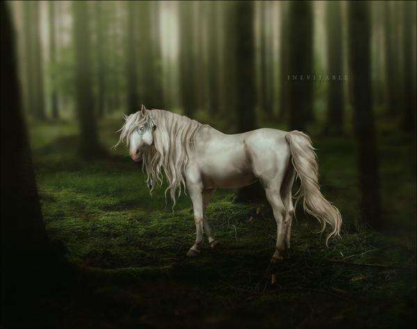 libertad_by_yewrezz-d4nsyr4 by alimarije