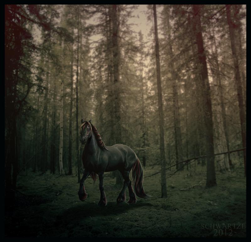 avareth__made_of_scars_by_schwartze-d4zazcb