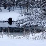 Helsinki Winter 2012