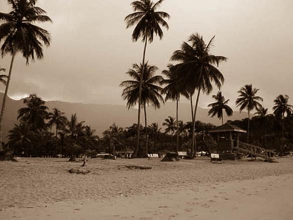 Landscapes by JoseFlores