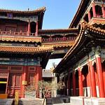 Temples à Beijing
