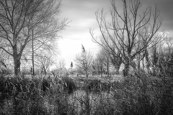 1000_Balaton_23_BW by -Ashen-