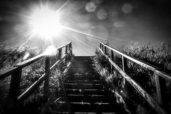 1000_Charlottenlund_1_7 by -Ashen-