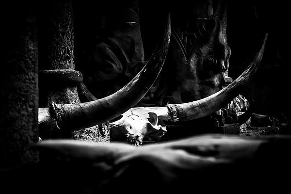 1000_Skulls by -Ashen-