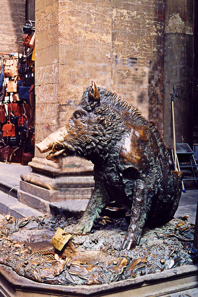 Florence Market Boar_pe by James Bickler