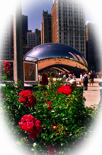 THe_Bean_9_pe_pe_(2) by James Bickler