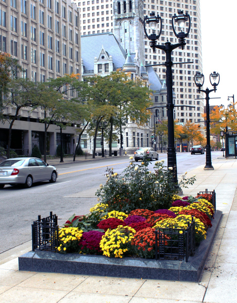 MIL12_WI Ave_pe by James Bickler