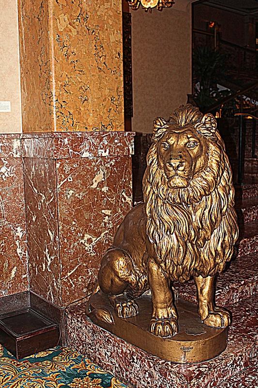 MIL12_Pfister lion