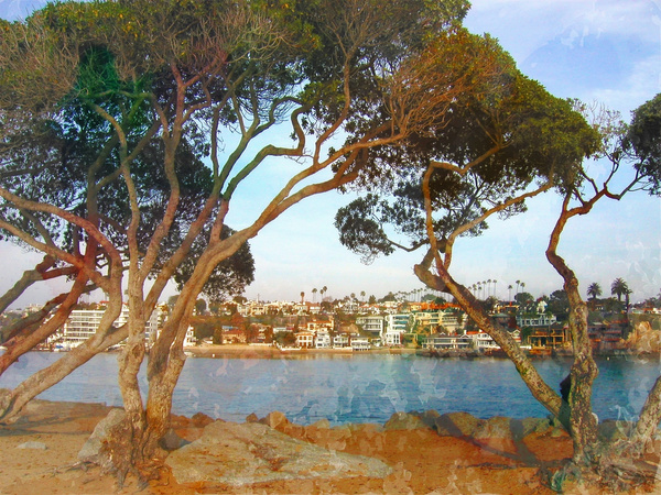 View from Balboa A_pe by James Bickler