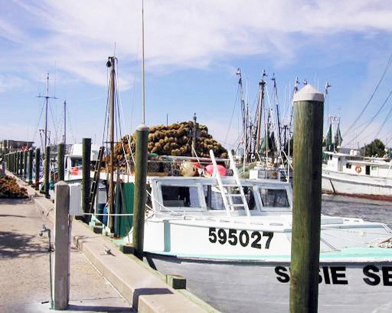 TS Sponge Boat 10,02
