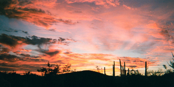 Tucson_AR_1997_A_72p_X36P by James Bickler