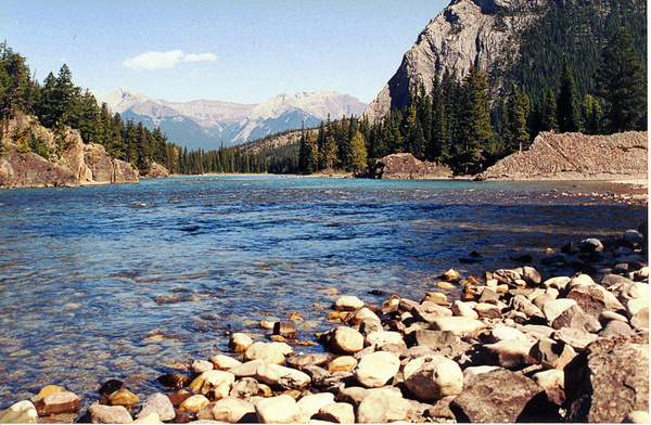 Bow_River_pe by James Bickler