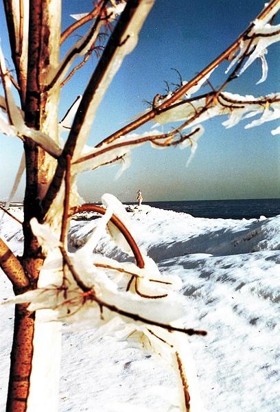 LF Lakefront Winter 1992_pe (2) by James Bickler