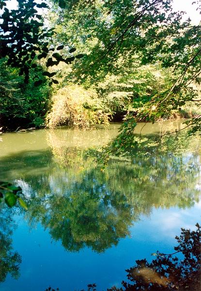 Des Plaines River A 1996 by James Bickler