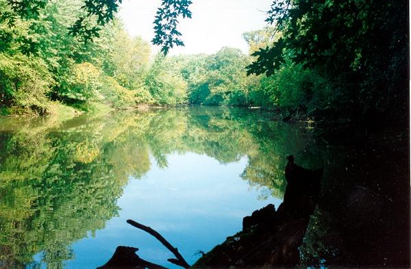 Des Plaines River C 1996 by James Bickler