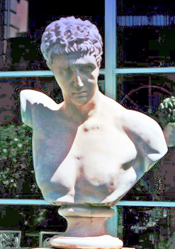 Cuneo Estate Bust 8.02 _pe (3)