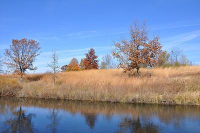 Autumn Bog (Volo Bog 2010)