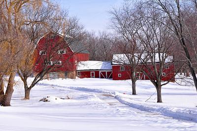 Barns February 2011
