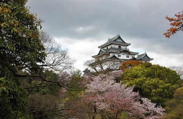 Wakayama Castle 3