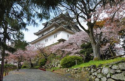 Wakayama Japan March 2014