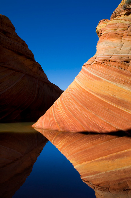 Striated sandstone reflected in seasonal pool of water at The Wave