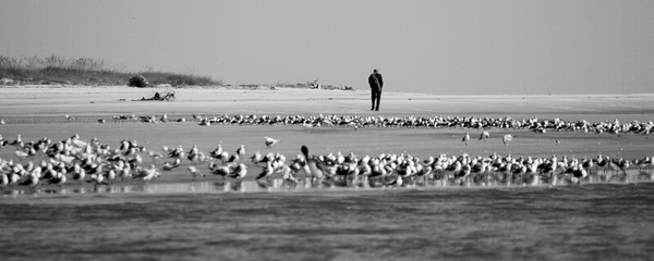 Alone_in_a_Crowd by LensCraft